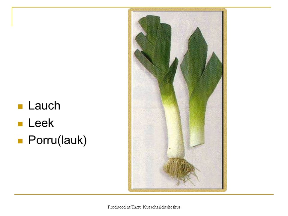 Produced at Tartu Kutsehariduskeskus Lauch Leek Porru(lauk)