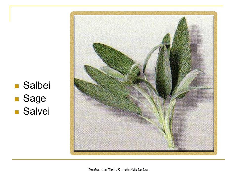 Produced at Tartu Kutsehariduskeskus Salbei Sage Salvei