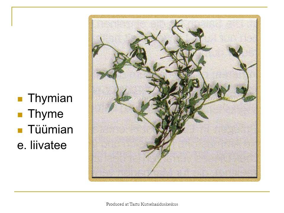 Produced at Tartu Kutsehariduskeskus Thymian Thyme Tüümian e. liivatee