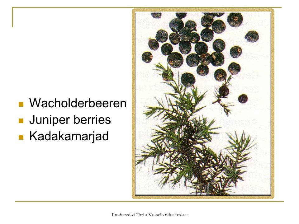 Produced at Tartu Kutsehariduskeskus Wacholderbeeren Juniper berries Kadakamarjad