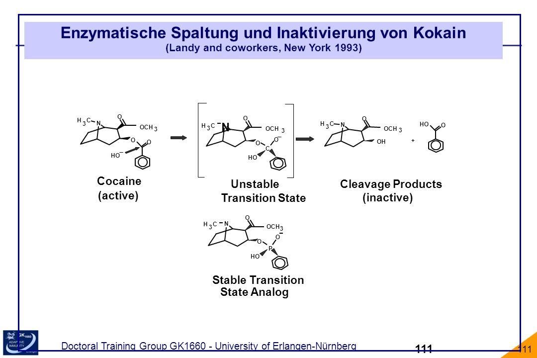 Doctoral Training Group GK1660 - University of Erlangen-Nürnberg 111 Enzymatische Spaltung und Inaktivierung von Kokain (Landy and coworkers, New York