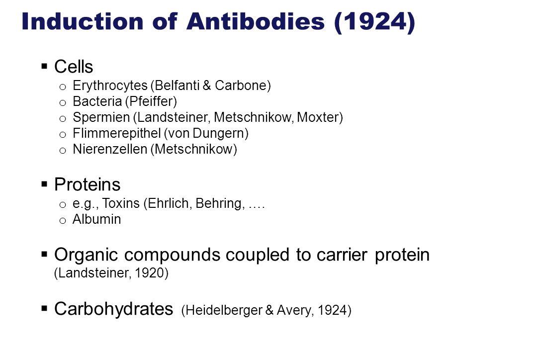 Induction of Antibodies (1924) Cells o Erythrocytes (Belfanti & Carbone) o Bacteria (Pfeiffer) o Spermien (Landsteiner, Metschnikow, Moxter) o Flimmer