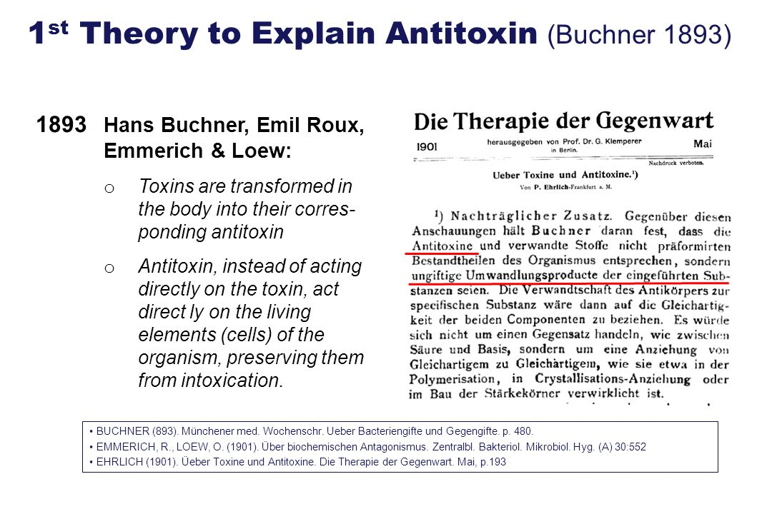 1893 Hans Buchner, Emil Roux, Emmerich & Loew: o Toxins are transformed in the body into their corres- ponding antitoxin o Antitoxin, instead of actin