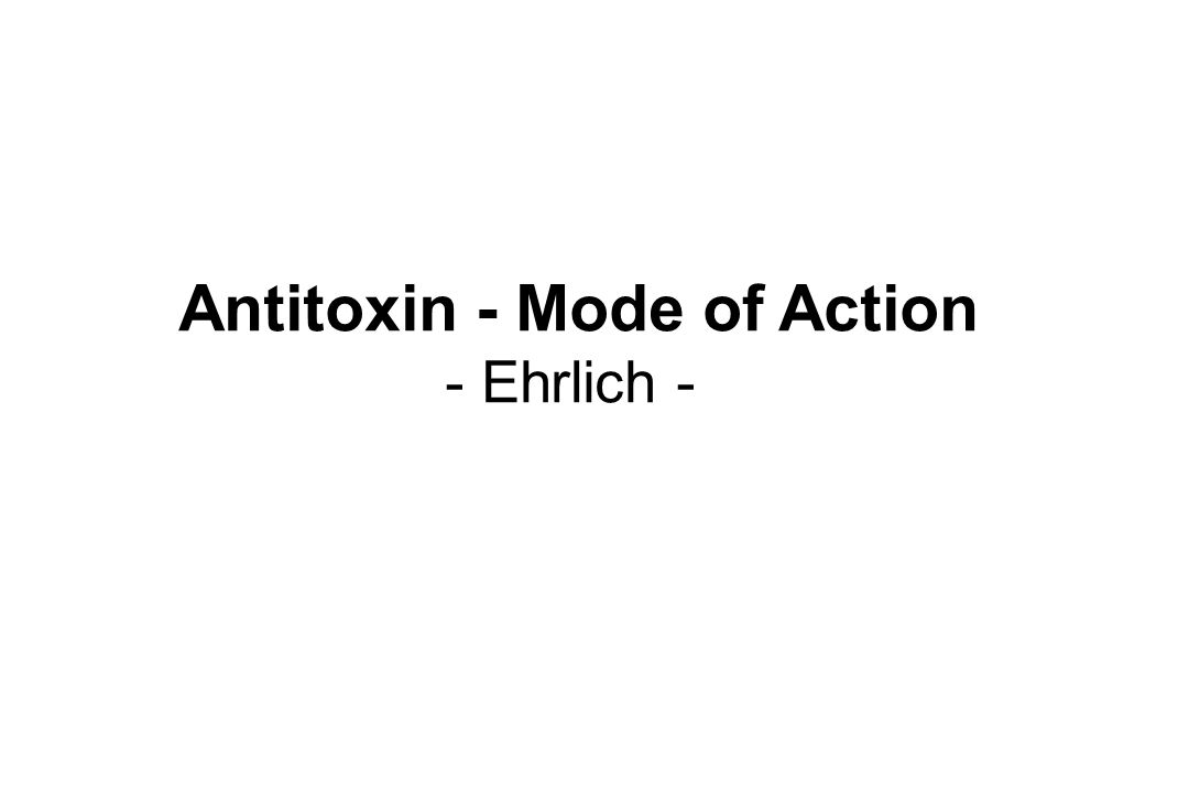 Antitoxin - Mode of Action - Ehrlich -