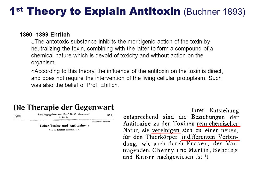 1890 -1899 Ehrlich o The antotoxic substance inhibits the morbigenic action of the toxin by neutralizing the toxin, combining with the latter to form