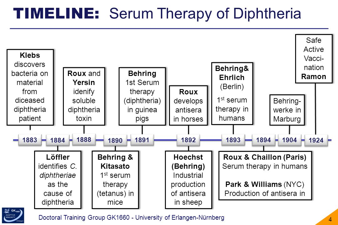 Doctoral Training Group GK1660 - University of Erlangen-Nürnberg 5 Summary: Humoral immunity (1905) Eichmann, Klaus (2000).