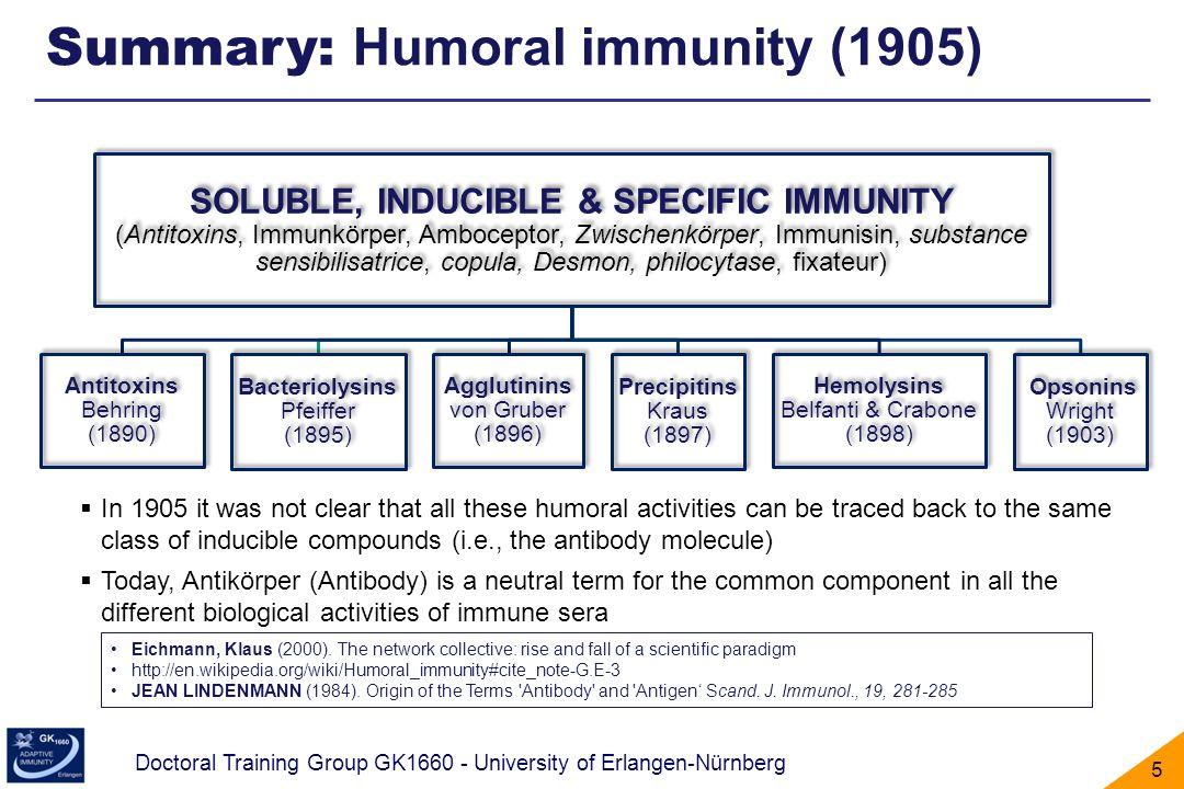 Doctoral Training Group GK1660 - University of Erlangen-Nürnberg 5 Summary: Humoral immunity (1905) Eichmann, Klaus (2000). The network collective: ri