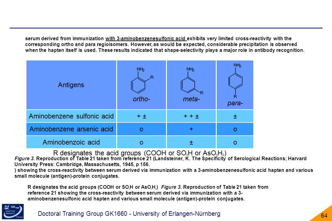 Doctoral Training Group GK1660 - University of Erlangen-Nürnberg 64 R designates the acid groups (COOH or SO 3 H or AsO 3 H 2 ) Figure 3. Reproduction