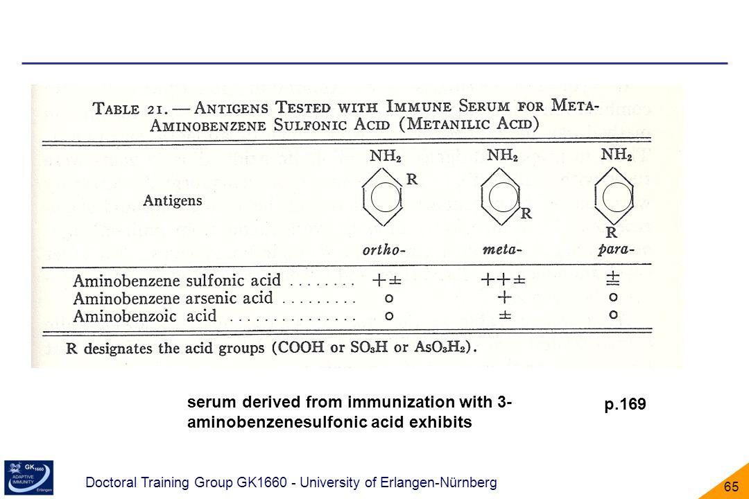 Doctoral Training Group GK1660 - University of Erlangen-Nürnberg 65 p.169 serum derived from immunization with 3- aminobenzenesulfonic acid exhibits