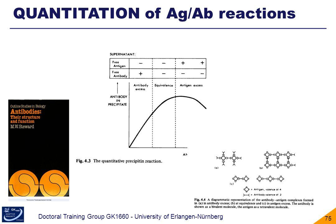 Doctoral Training Group GK1660 - University of Erlangen-Nürnberg 75 QUANTITATION of Ag/Ab reactions
