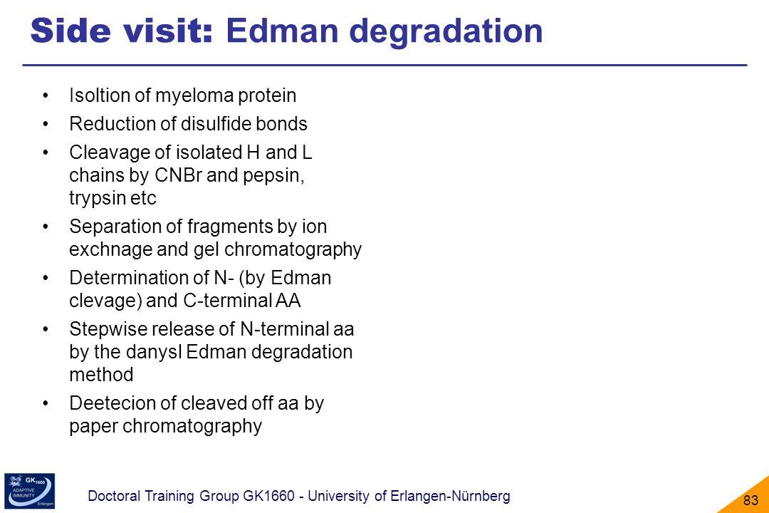 Doctoral Training Group GK1660 - University of Erlangen-Nürnberg 83 Side visit: Edman degradation Isoltion of myeloma protein Reduction of disulfide b