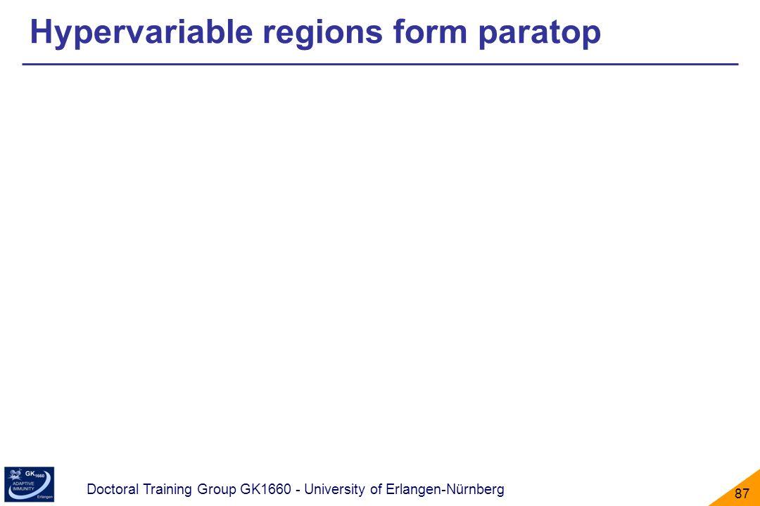 Doctoral Training Group GK1660 - University of Erlangen-Nürnberg 87 Hypervariable regions form paratop