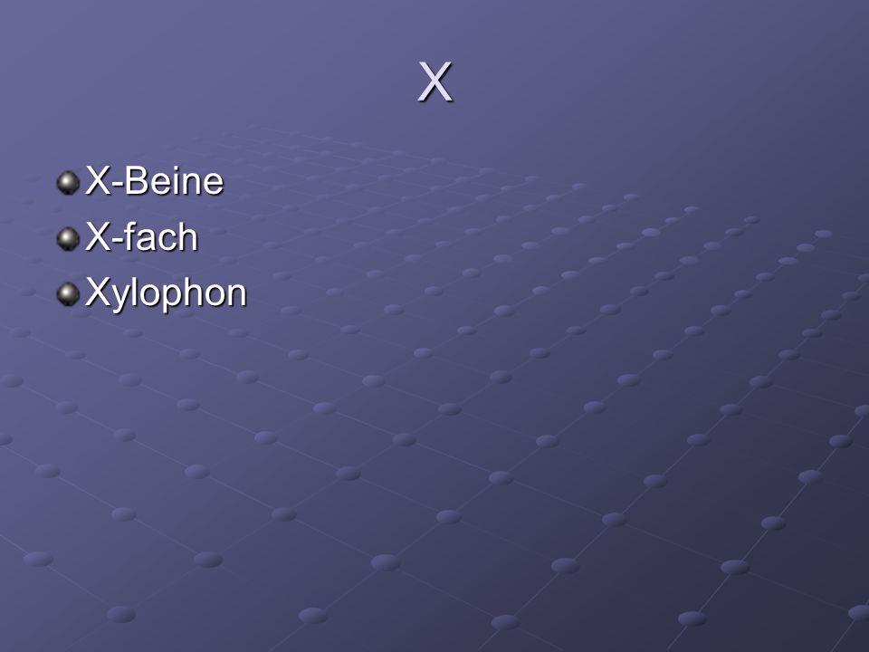 X X-BeineX-fachXylophon