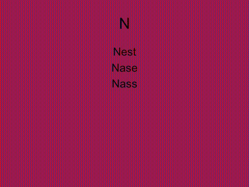 N Nest Nase Nass