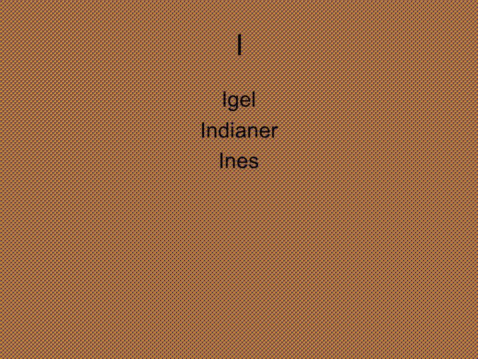 I Igel Indianer Ines