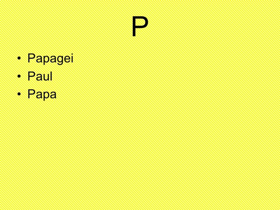 P Papagei Paul Papa