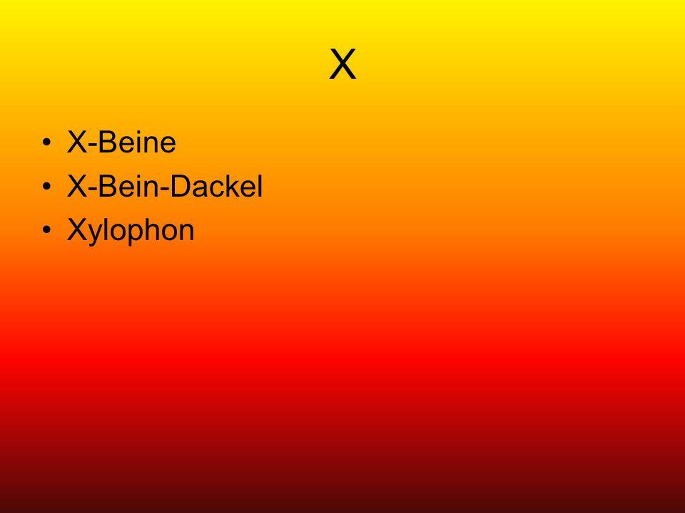 X X-Beine X-Bein-Dackel Xylophon