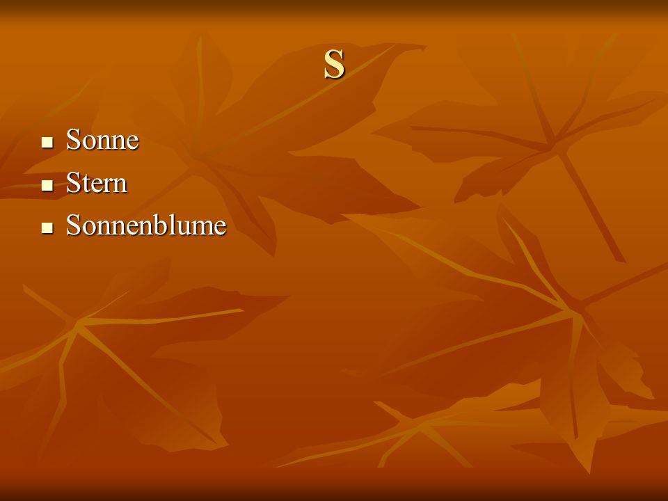 S Sonne Sonne Stern Stern Sonnenblume Sonnenblume