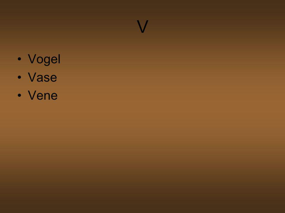 V Vogel Vase Vene