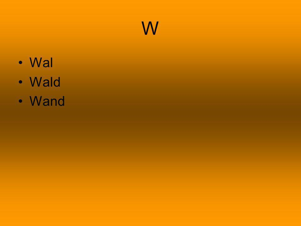 W Wal Wald Wand