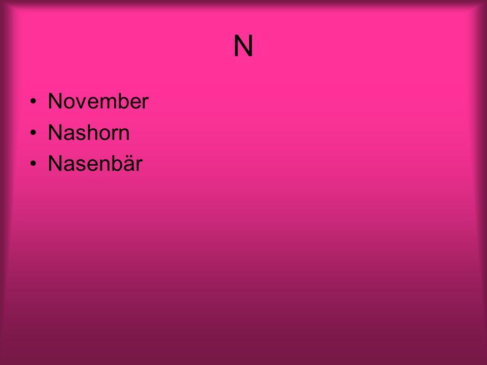 N November Nashorn Nasenbär