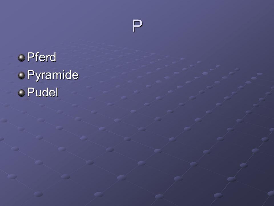 P PferdPyramidePudel