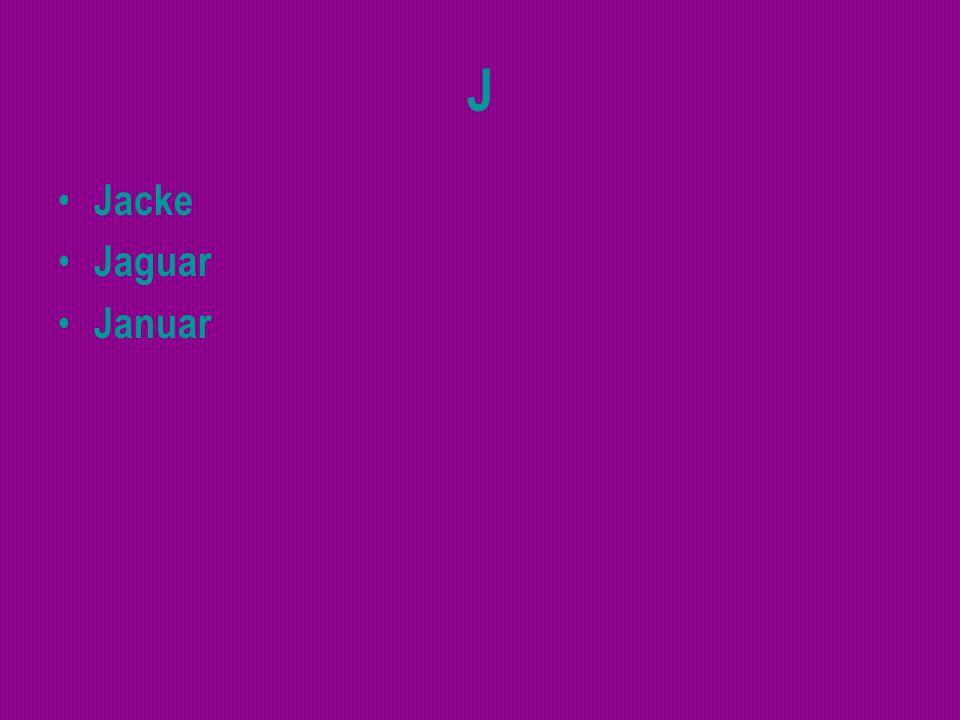 J Jacke Jaguar Januar