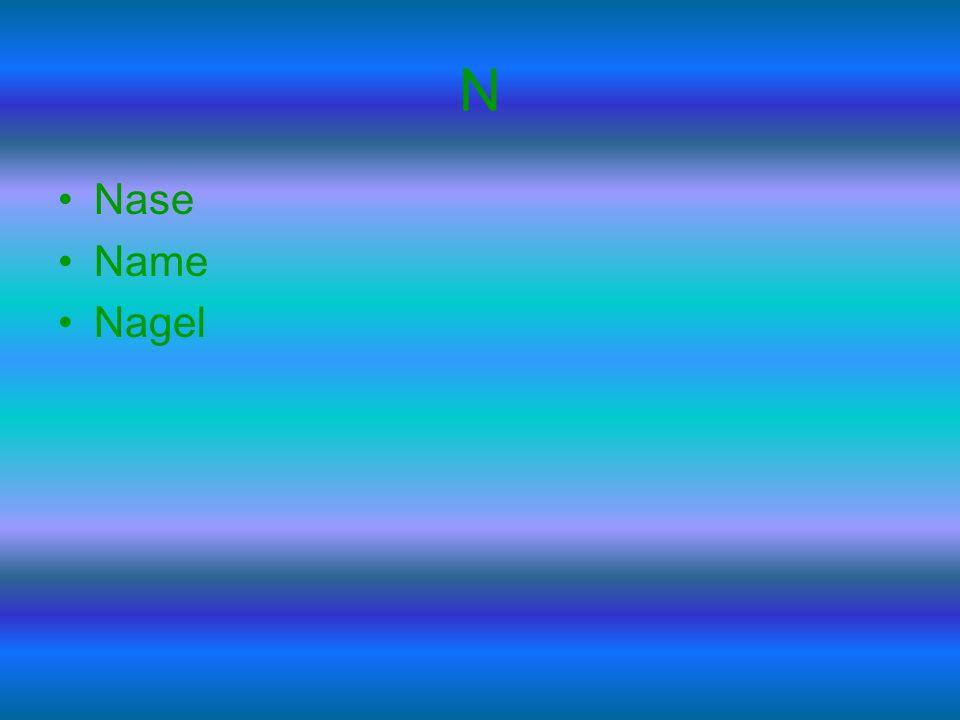 N Nase Name Nagel