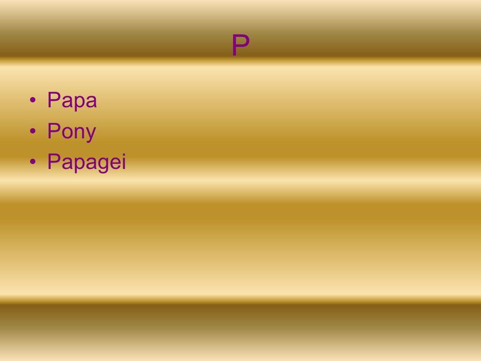 P Papa Pony Papagei