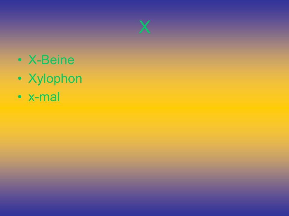 X X-Beine Xylophon x-mal