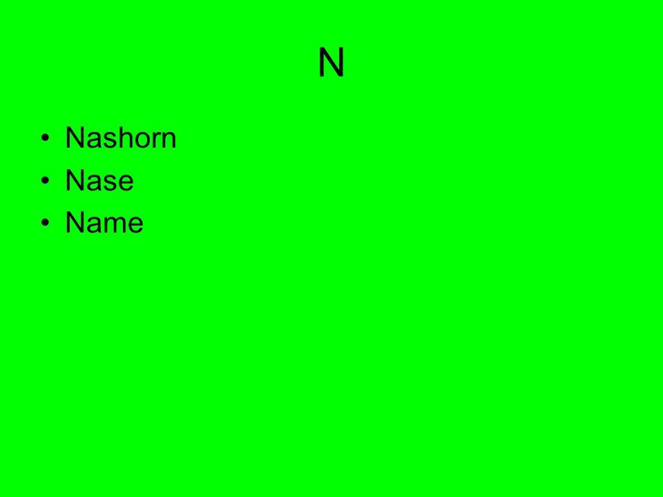 N Nashorn Nase Name