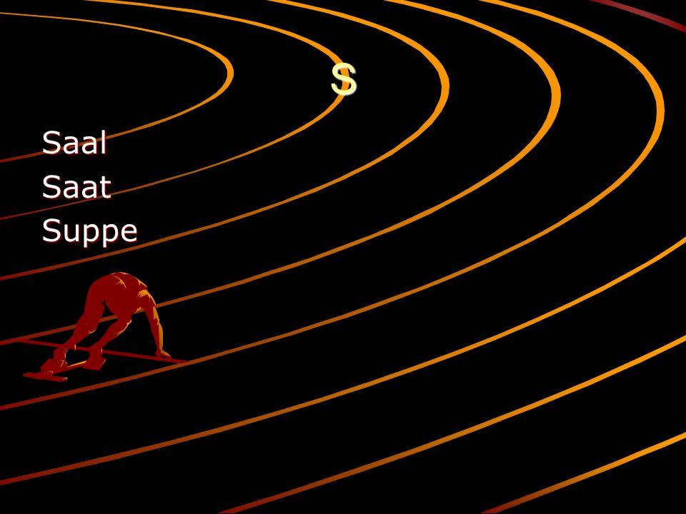 S SaalSaatSuppe