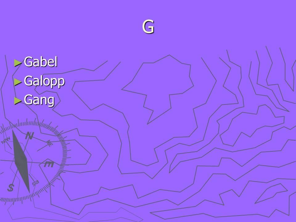 G Gabel Gabel Galopp Galopp Gang Gang
