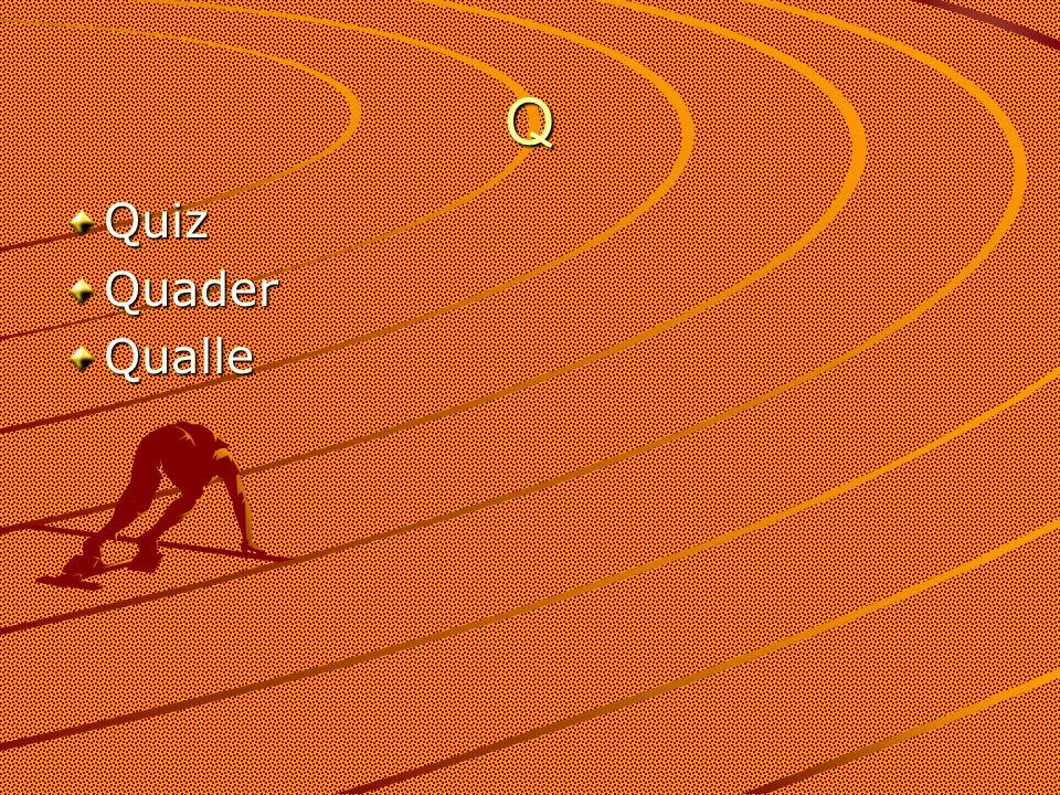 Q QuizQuaderQualle