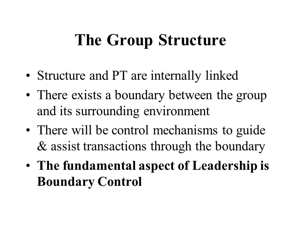The Group Structure Structure and PT are internally linked There exists a boundary between the group and its surrounding environment There will be control mechanisms to guide & assist transactions through the boundary The fundamental aspect of Leadership is Boundary Control