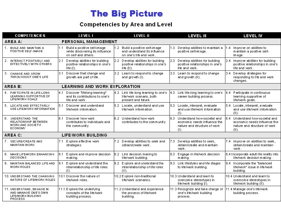 17 The Big Picture