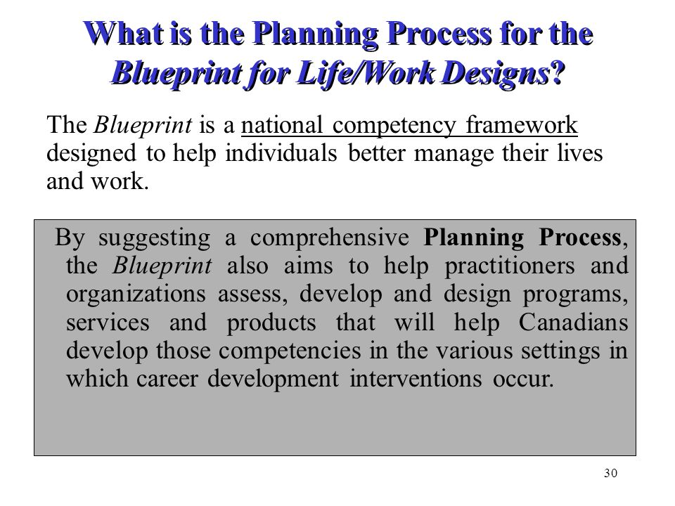 30 What is the Planning Process for the Blueprint for Life/Work Designs? By suggesting a comprehensive Planning Process, the Blueprint also aims to he