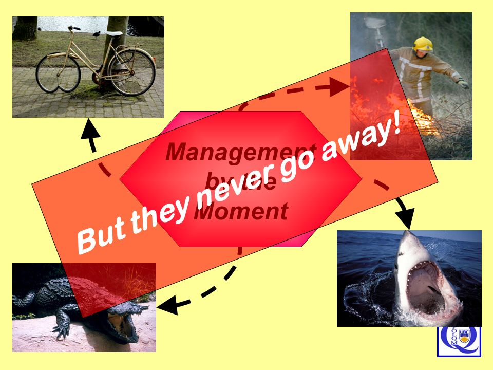 Management by the Moment But they never go away!