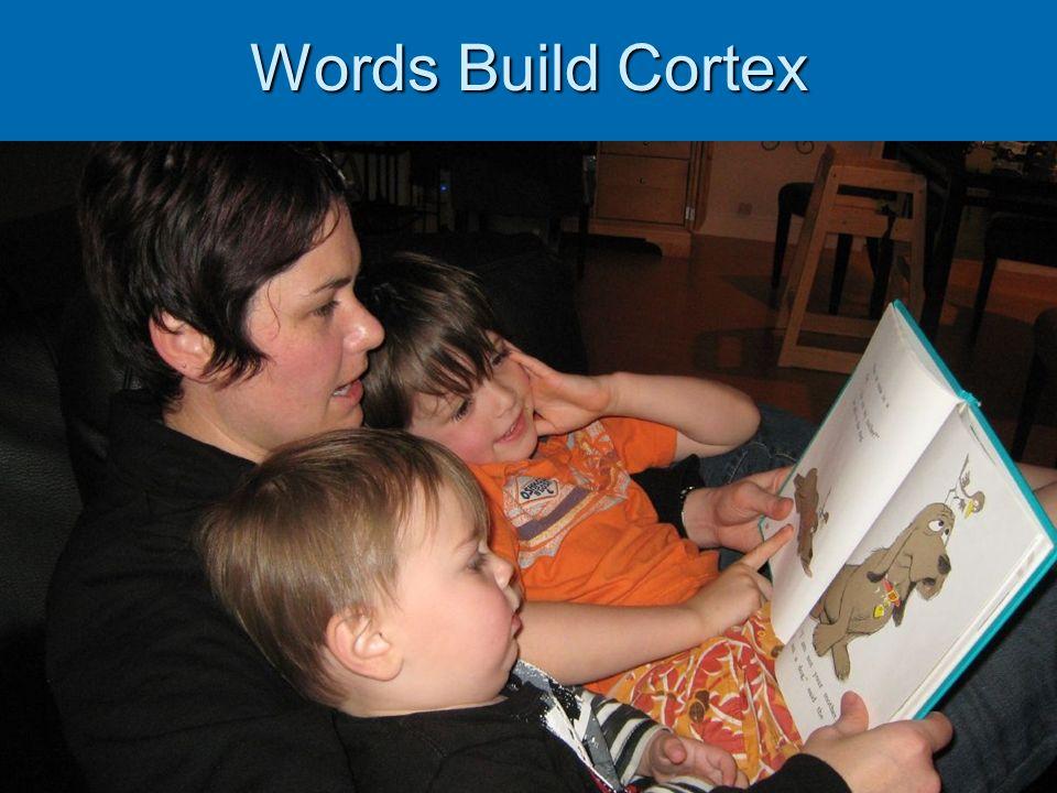 Words Build Cortex