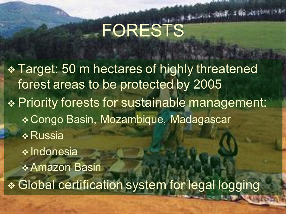 Target: 50 m hectares of highly threatened forest areas to be protected by 2005 Priority forests for sustainable management: Congo Basin, Mozambique,