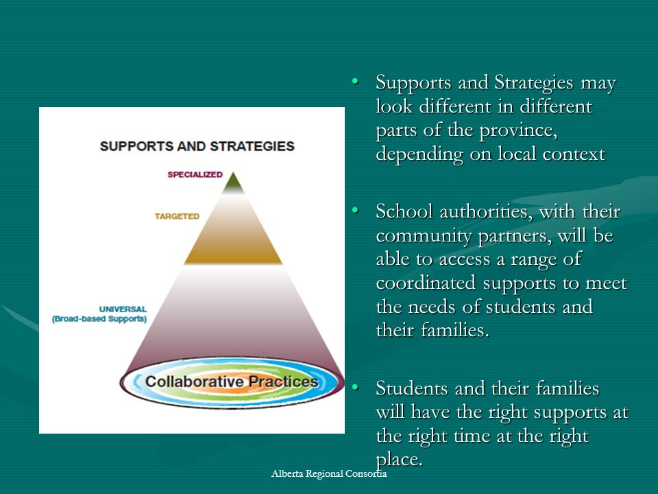 Supports and Strategies may look different in different parts of the province, depending on local context School authorities, with their community par