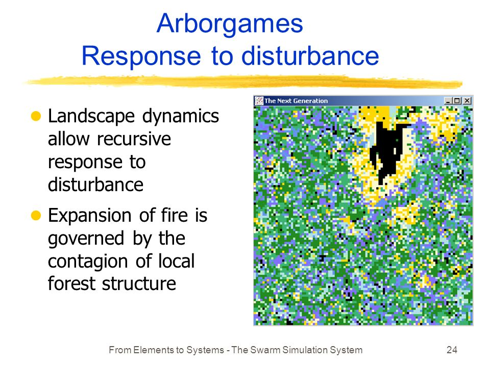 From Elements to Systems - The Swarm Simulation System24 Arborgames Response to disturbance l Landscape dynamics allow recursive response to disturbance l Expansion of fire is governed by the contagion of local forest structure