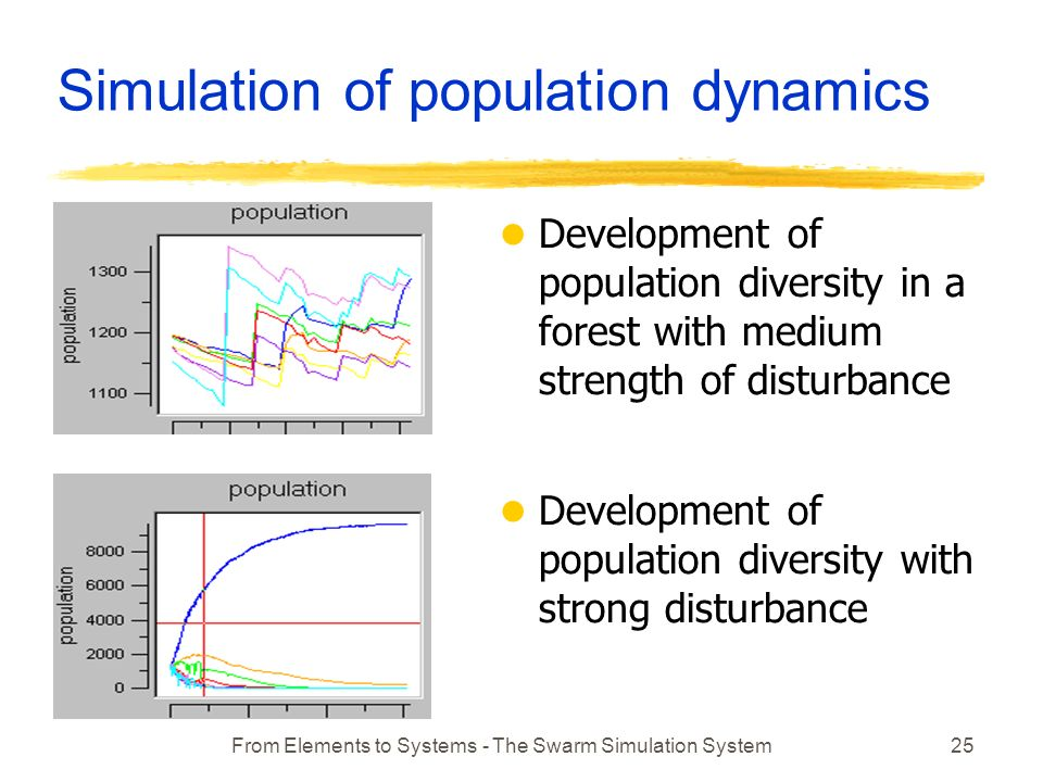 From Elements to Systems - The Swarm Simulation System25 Simulation of population dynamics l Development of population diversity in a forest with medium strength of disturbance l Development of population diversity with strong disturbance