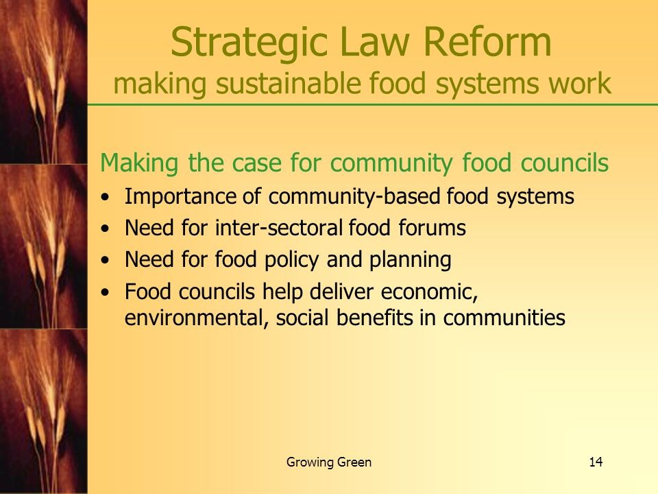 Growing Green14 Making the case for community food councils Importance of community-based food systems Need for inter-sectoral food forums Need for fo