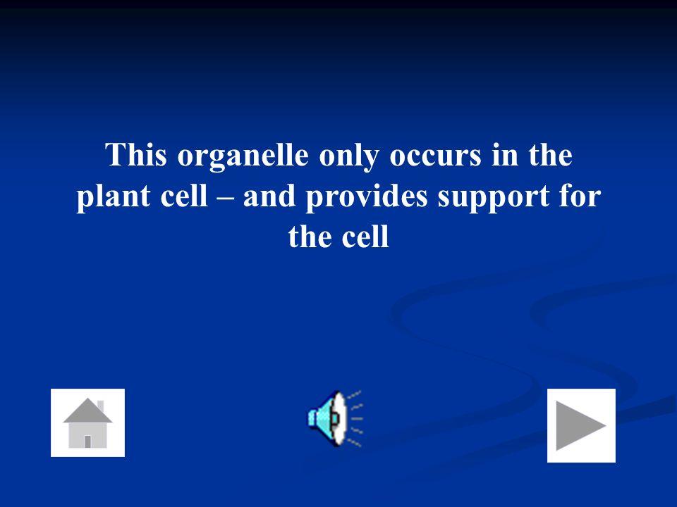 What is the cytosol? (cytoplasm)