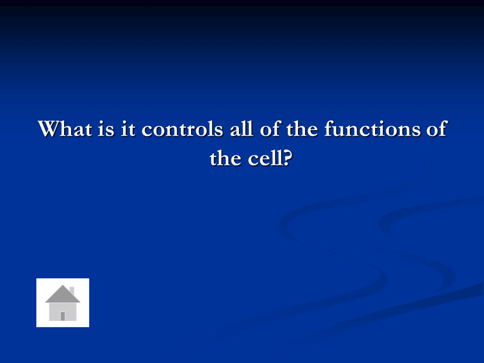 This is the function of the nucleus.
