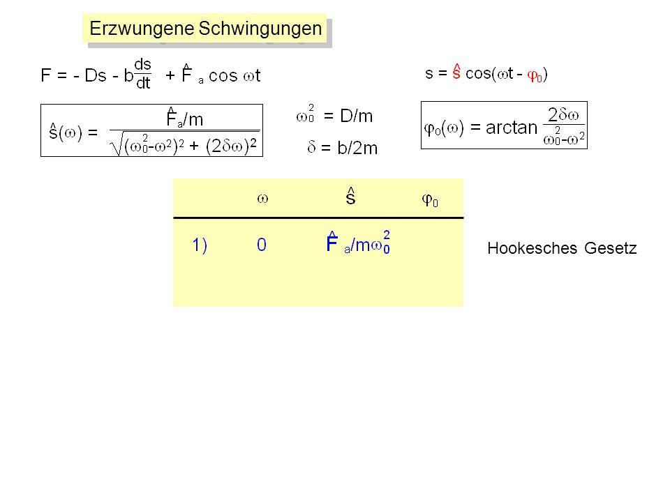 Hookesches Gesetz