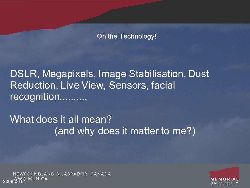 2006-06-01 Oh the Technology! DSLR, Megapixels, Image Stabilisation, Dust Reduction, Live View, Sensors, facial recognition.......... What does it all