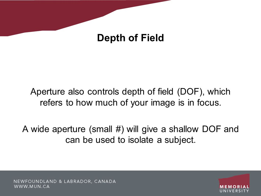 Depth of Field Aperture also controls depth of field (DOF), which refers to how much of your image is in focus. A wide aperture (small #) will give a