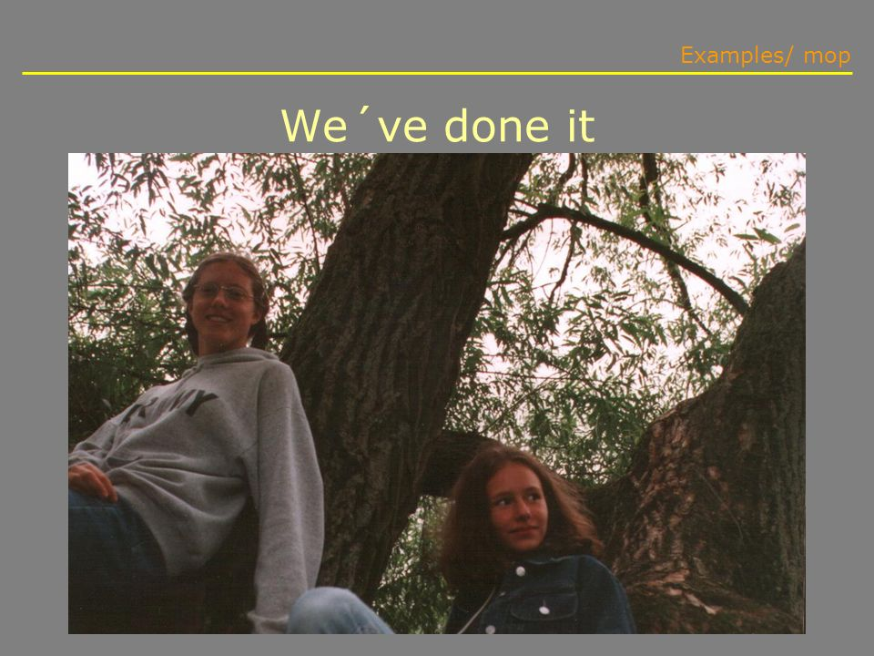 We´ve done it Examples/ mop